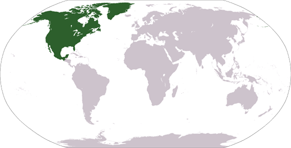 Countries and Landmarks in North America