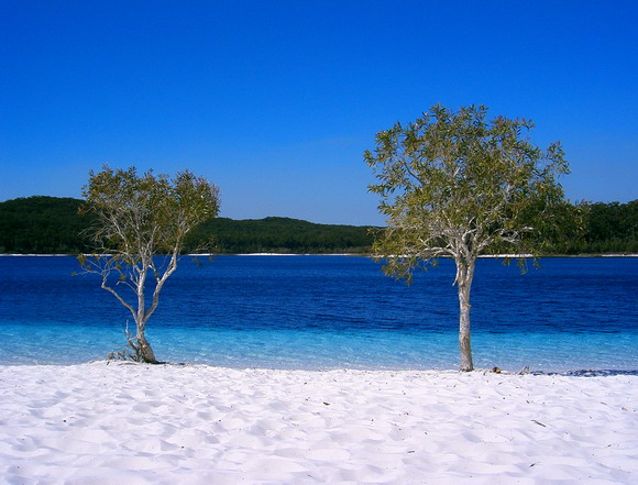 Landmark Lake McKenzie